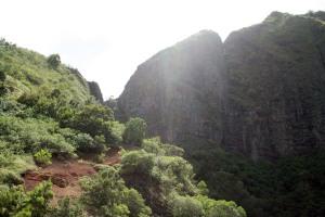 Beginning of Mikilua exclosure trail.